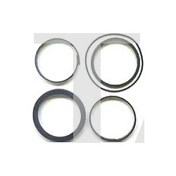 Set of piston seals D.80